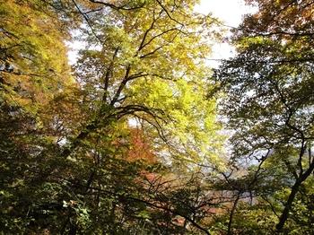 妙義山 石門めぐり120.jpg